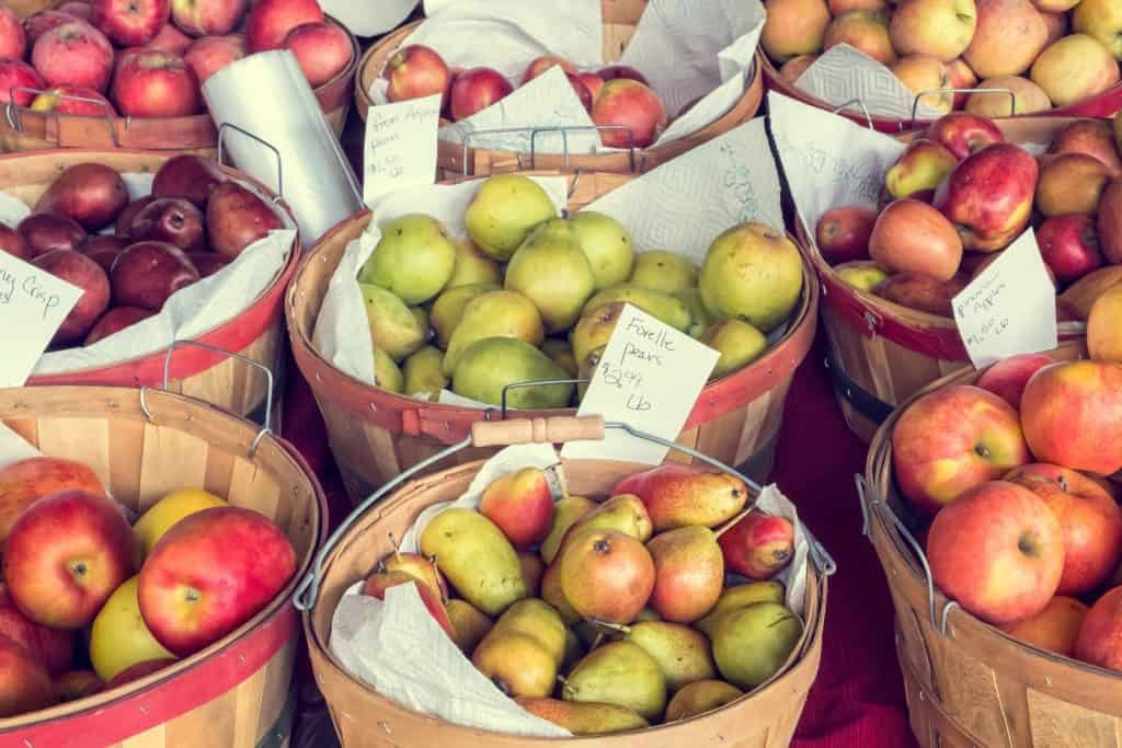 scarsdale farmers market