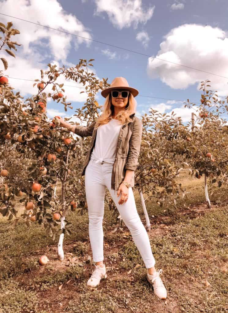 Where to go Apple Picking in New York tri-state